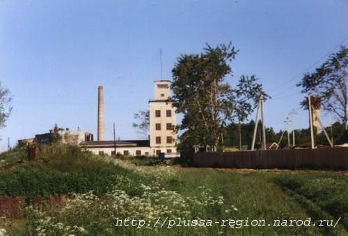 Водонапорная башня заполье плюсского района